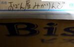 Bdsc_1579