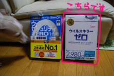 Bdsc_8713